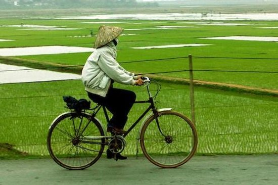 Mekong Delta, Vietnam: Cycling to work
