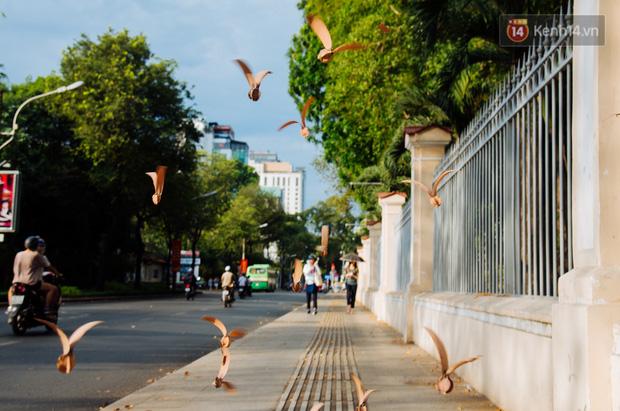 Mùa chò nâu xoay tít trên đỉnh đầu - Những vũ điệu quyến rũ người Sài Gòn khắp mọi nẻo đường - Ảnh 6.
